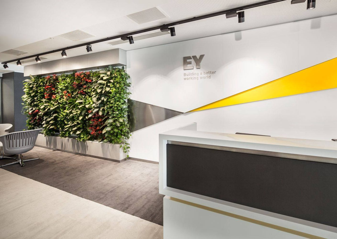 Ernst-Young-Romania-ama-design_hcd_01